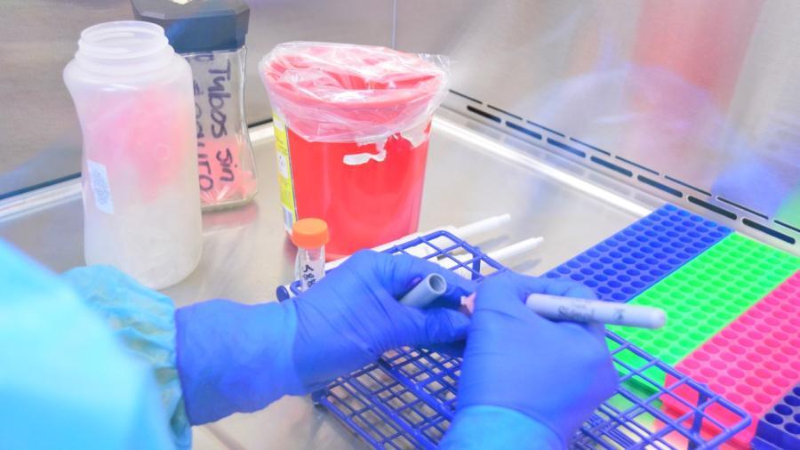 Detectan 12 nuevos casos de COVID-19 en Tamaulipas, van mil 213