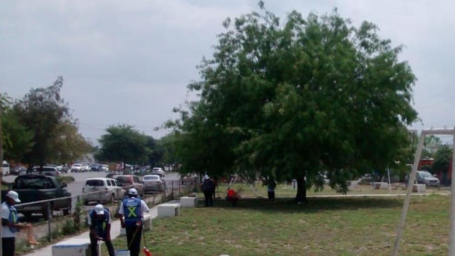 Ante intensa ola de calor concientizan a la Ciudadanía sobre la importancia de la reforestación en Zonas Urbanas