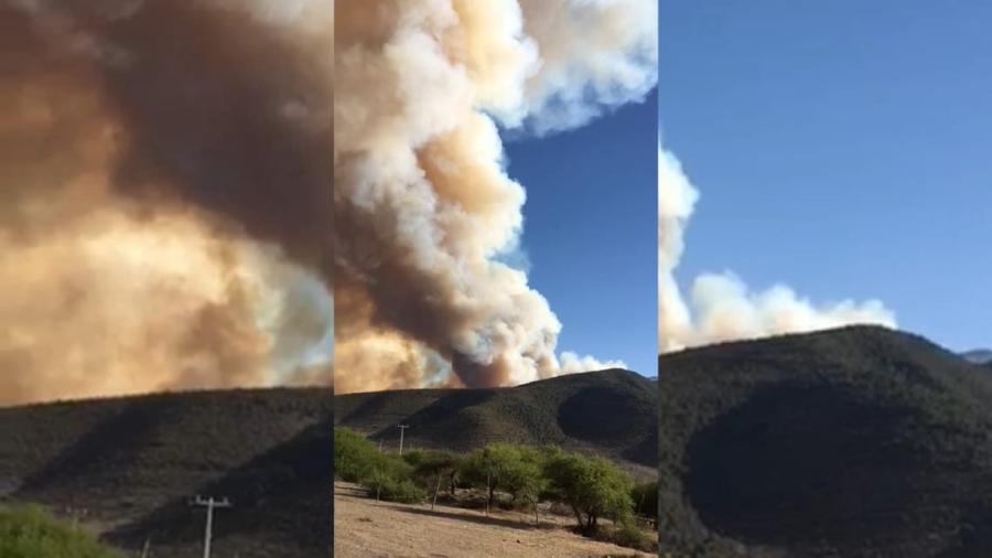 Dantesco incendio se registra de nueva cuenta en la Sierra de Miquihuana