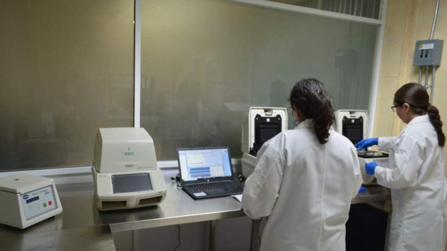 Confirma Tamaulipas 87 nuevos casos y 6 decesos por COVID-19