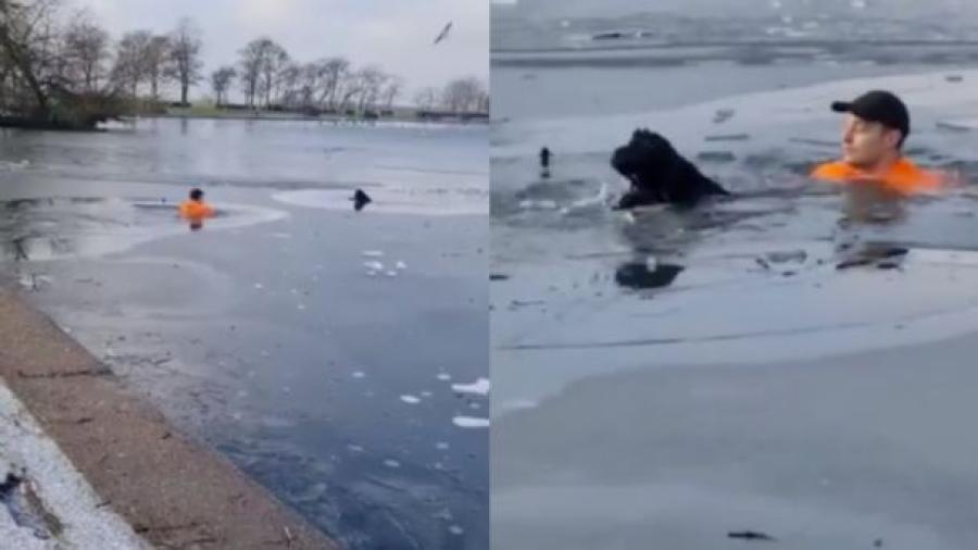 Hombre salta a lago congelado para salvar a un perrito