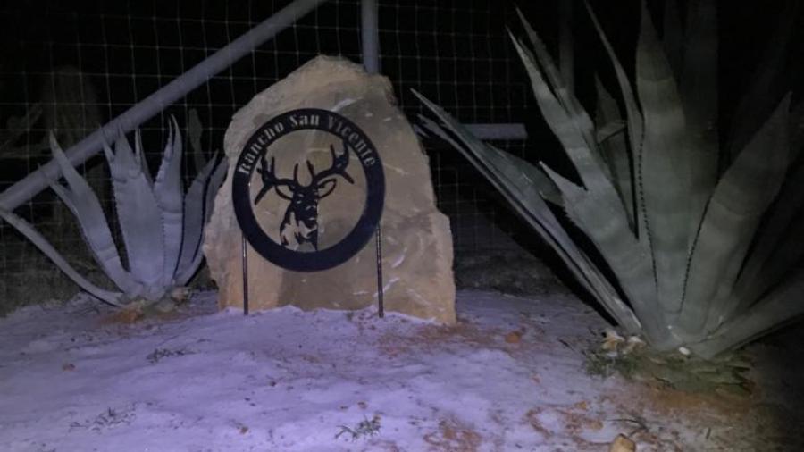 Reporta ganadería daños mínimos por frente frío en Nuevo Laredo