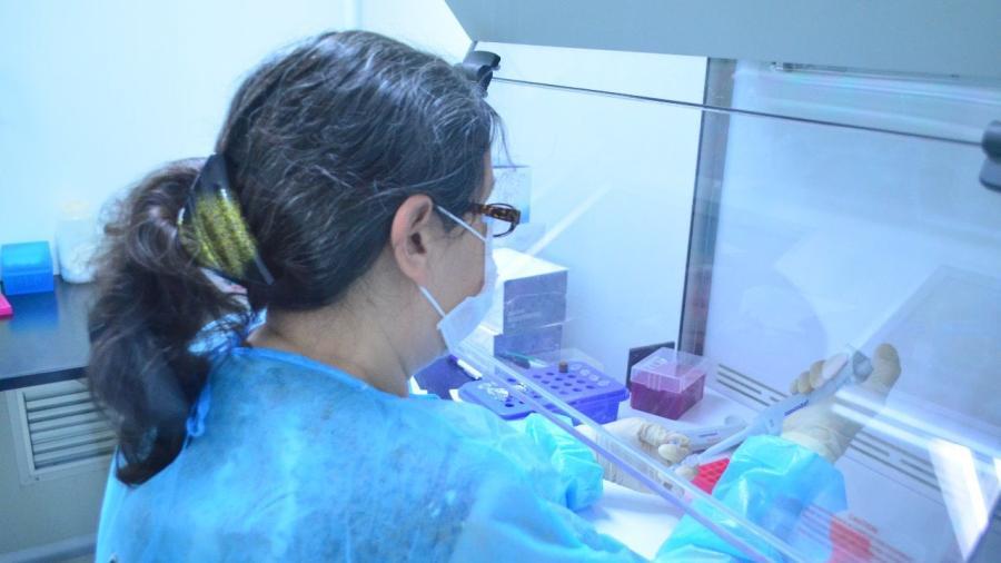 SST registra 208 nuevos casos de COVID-19 en Tamaulipas