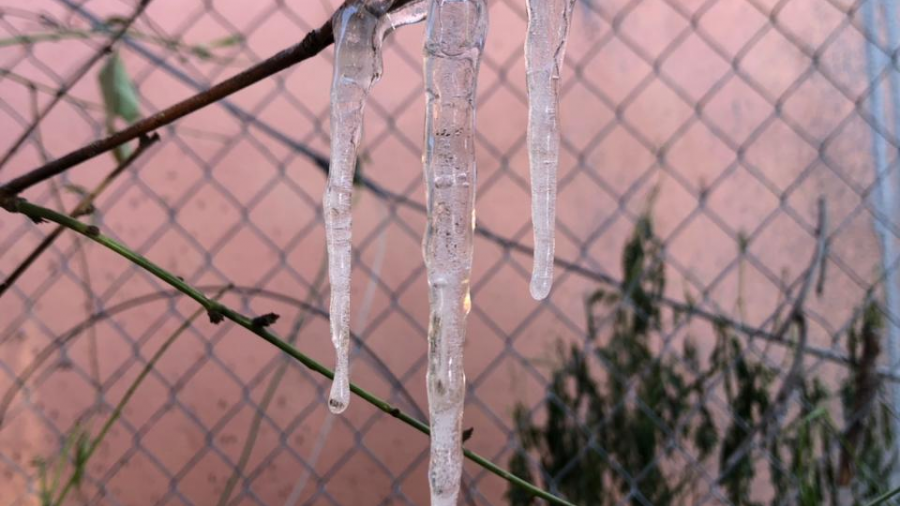 Pronostican segunda noche helada con sensación de -15 grados